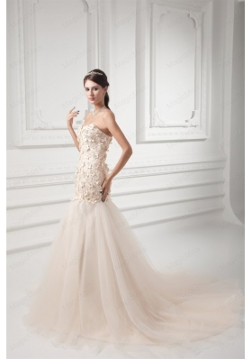 Champagne A Line Sweetheart Court Train Wedding Dress with Appliques