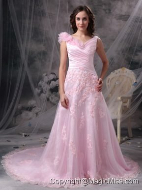 Baby Pink Princess V-neck Floor-length Chiffon Appliques and Ruch Prom / Celebrity Dress