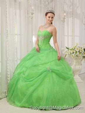 Spring Green Ball Gown Sweetheart Floor-length Organza Appliques Quinceanera Dress