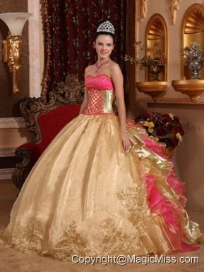 Gold Ball Gown Strapless Floor-length Organza Embroidery Quinceanera Dress