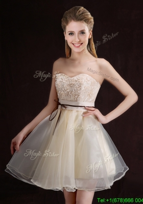 Gorgeous Belted and Applique Short Bridesmaid Dress in Organza