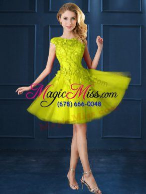 Knee Length Yellow Bridesmaids Dress Tulle Cap Sleeves Lace and Appliques