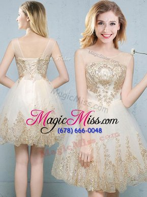 Amazing Scoop Sleeveless Tulle Mini Length Lace Up Quinceanera Court Dresses in Champagne for with Appliques