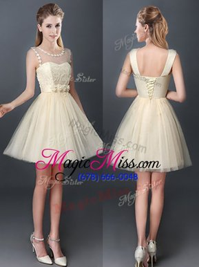Fashion Scoop Sleeveless Lace Up Quinceanera Dama Dress Champagne Tulle