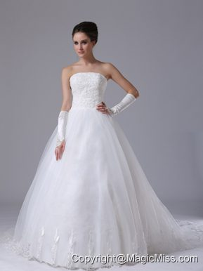 Bettendorf Iowa Lace Strapless Organza Chapel Train Ball Gown 2013 Wedding Dress