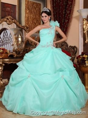 Apple Green Ball Gown One Shoulder Floor-length Organza Appliques Quinceanera Dress