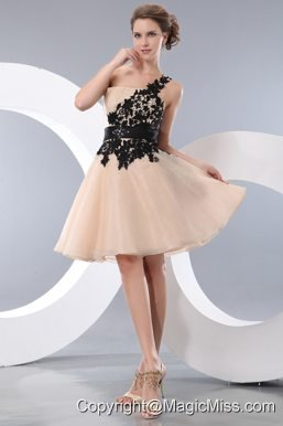 Champagne A-line / Pricess One Shoulder Mini-length Organza Appliques Prom / Homecoming Dress