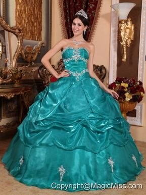 Turquoise Ball Gown Strapless Floor-length Organza Appliques Quinceanera Dress