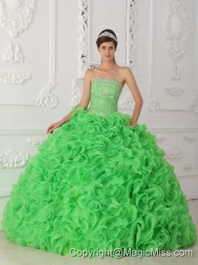 Green Ball Gown Strapless Floor-length Organza Beading Quinceanera Dress