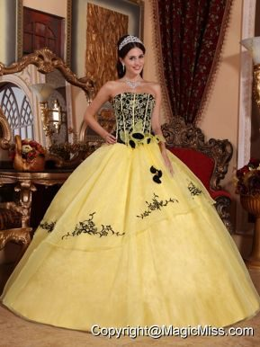 Yellow Ball Gown Strapless Floor-length Organza Embroidery Quinceanera Dress