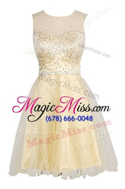 Champagne Scoop Zipper Sequins Homecoming Dress Sleeveless