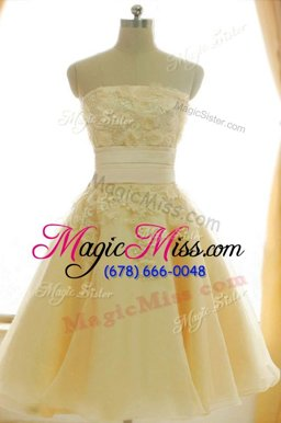 Glittering Yellow Sleeveless Satin and Chiffon Zipper Dress for Prom for Prom and Party and Wedding Party