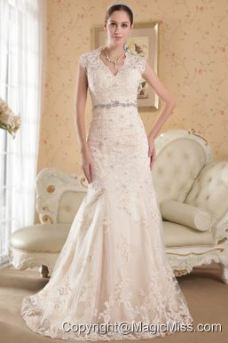 Champagne Mermaid V-neck Court Train Lace Beading Wedding Dress