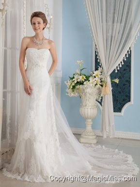 Wonderful A-Line / Princess Strapless Chapel Train Tulle Appliques Wedding Dress