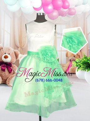 Amazing Scoop Apple Green Sleeveless Organza Zipper Toddler Flower Girl Dress for Military Ball and Sweet 16 and Quinceanera