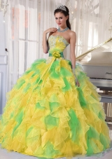 Ball Gown Appliques and Ruffles Organza Long Quinceanera Dress