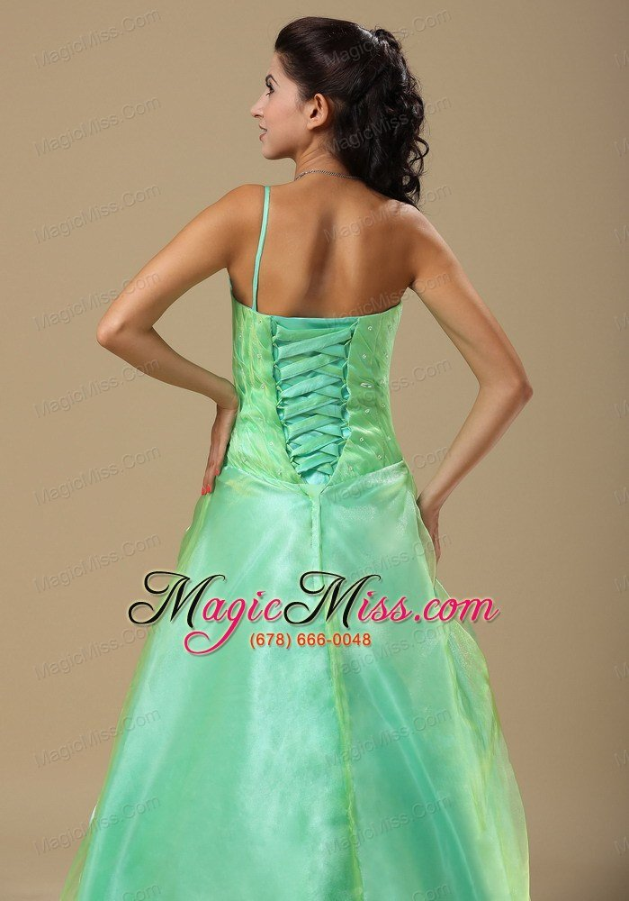 Apple Green Hand Made Folwers and Ruched Bodice In Springfield ...