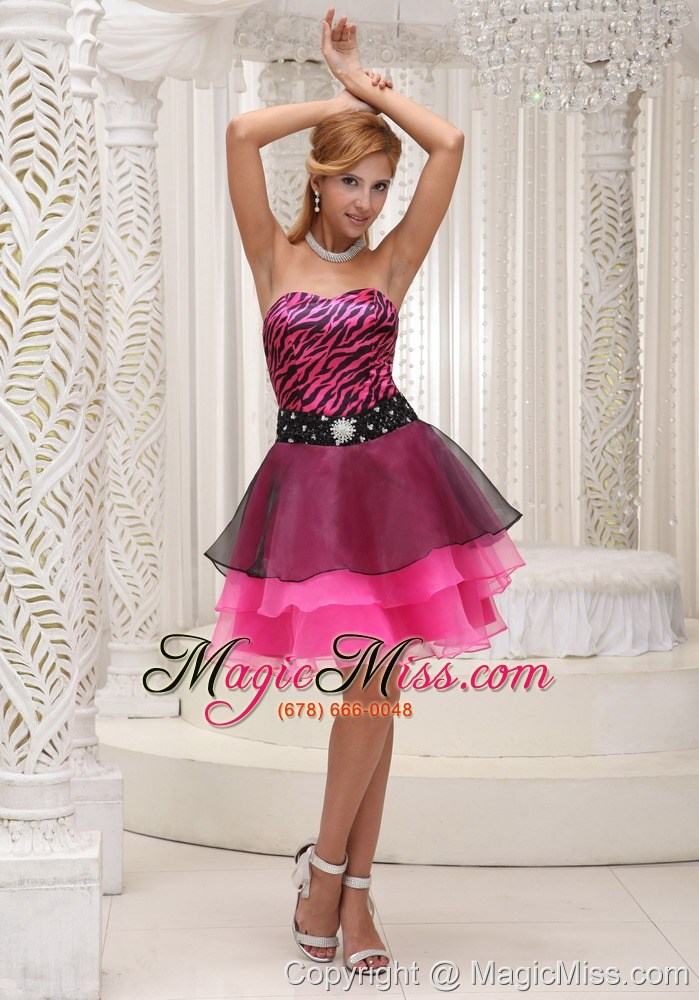 hot pink and black prom cocktail dress for 2013 zebra